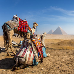 Cheap Flights from Shannon to Cairo